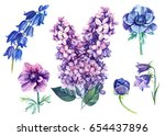 lilac  anemone  bell flowers... | Shutterstock . vector #654437896