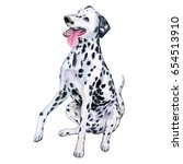 dalmatian dog isolated on white ...   Shutterstock . vector #654513910