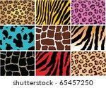 vector animal skin of different ... | Shutterstock .eps vector #65457250
