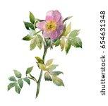 Hand Drawn Flower Of Briar On ...