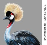 Grey Crowned Crane Portrait On...