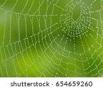 Cobweb  spiderweb with water...