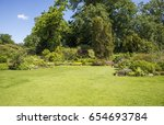 english garden with plants and... | Shutterstock . vector #654693784