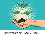green sprout in hand.... | Shutterstock .eps vector #654724510