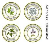 set of essential oil labels.... | Shutterstock .eps vector #654732199