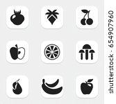 set of 9 editable fruits icons. ...