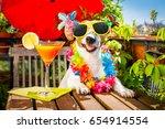 drunk jack russell dog relaxing ... | Shutterstock . vector #654914554