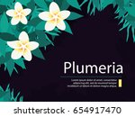 tropical background with...   Shutterstock .eps vector #654917470