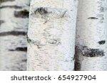 Three Birch Trees Detail