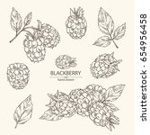 collection of blackberry  a... | Shutterstock .eps vector #654956458