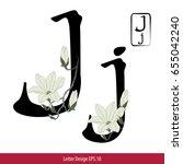 vector of letter j  english... | Shutterstock .eps vector #655042240