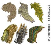Set Of Colorful Bird Wings Of...