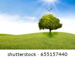 tree in the shape of heart ... | Shutterstock . vector #655157440