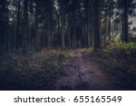 idless woods dark and... | Shutterstock . vector #655165549