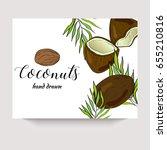 coconuts hand drawn vector... | Shutterstock .eps vector #655210816