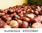 Small photo of Natural unstaged pile of horse chestnuts on concrete wall