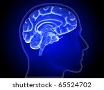 Brain, Hemisphere, Head Silhouette - stock photo