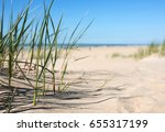 grass in the sand dunes with... | Shutterstock . vector #655317199