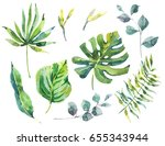 summer set of exotic watercolor ... | Shutterstock . vector #655343944