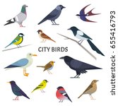 city birds. vector collection... | Shutterstock .eps vector #655416793