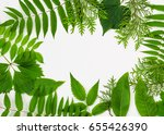 frame from green leaves | Shutterstock . vector #655426390