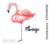 watercolor bird of isolated... | Shutterstock . vector #655448506
