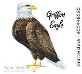 watercolor bird of isolated... | Shutterstock . vector #655448530