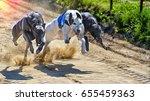 Greyhounds Racing Against Each...