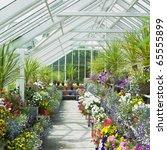 greenhouse  birr castle gardens ...   Shutterstock . vector #65555899