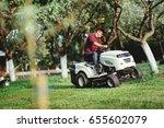 gardening details with worker... | Shutterstock . vector #655602079