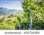 vineyard countryside  spain.... | Shutterstock . vector #655726390