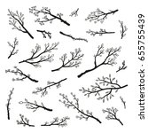 Collection Of Hand Drawn Tree...
