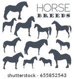 Horse Breeding Icon Set. Farm...