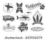 Surf Boards Emblem And Badges...
