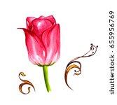 wildflower tulip flower in a... | Shutterstock . vector #655956769