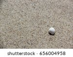 seashell on the sand. beautiful ... | Shutterstock . vector #656004958