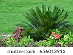 Botanical Lawn Garden With...