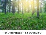 beautiful sunrise in morning... | Shutterstock . vector #656045350