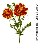 vector design of colorful...   Shutterstock .eps vector #656146090