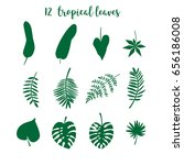 a vector set of 12 tropical... | Shutterstock .eps vector #656186008