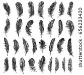 vector black and white feather... | Shutterstock .eps vector #656233420