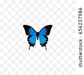 realistic polyommatus icarus... | Shutterstock .eps vector #656237986