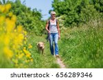 mature woman with a labrador... | Shutterstock . vector #656289346