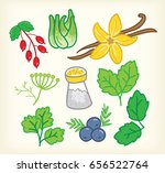 spices set with vanilla vector | Shutterstock .eps vector #656522764