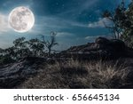 Landscape Of Night Sky With...