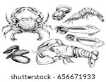 Seafood Hand Drawn Collection...