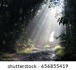 sun rays | Shutterstock . vector #656855419