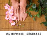 Pedicured female feet with orchid - stock photo