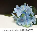 Bouquet Of Blue Hydrangea...