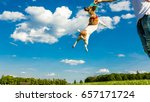 active jumping adorable funny... | Shutterstock . vector #657171724